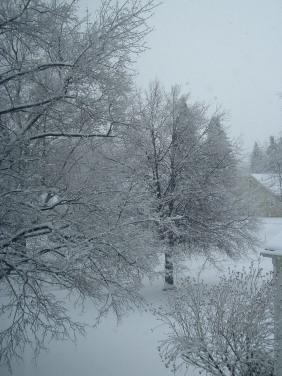 snowy outside