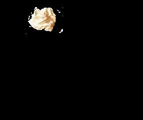 sq kingrat no shadow parchment ball
